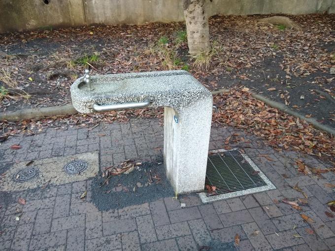 綱島台公園水飲み場