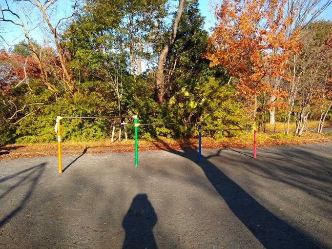 綱島公園鉄棒