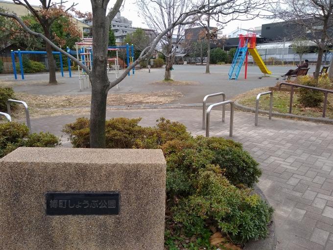樽町しょうぶ公園