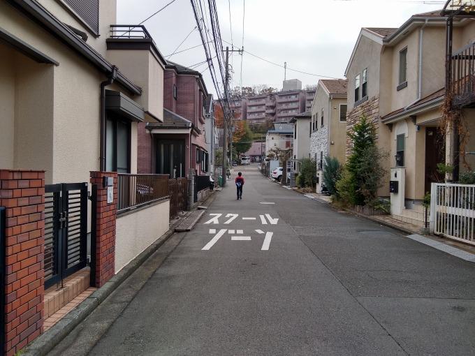 綱島台公園への道