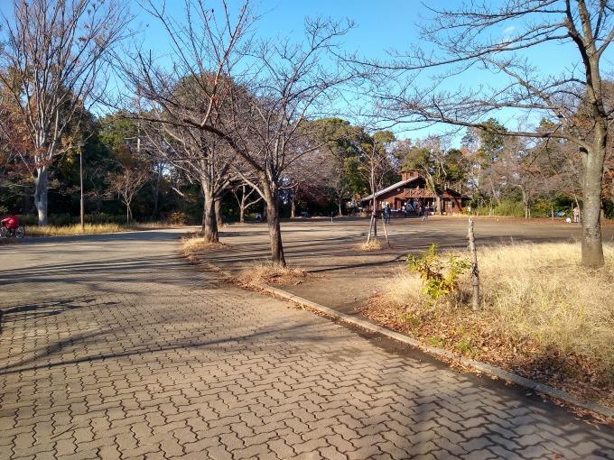 綱島公園運動場