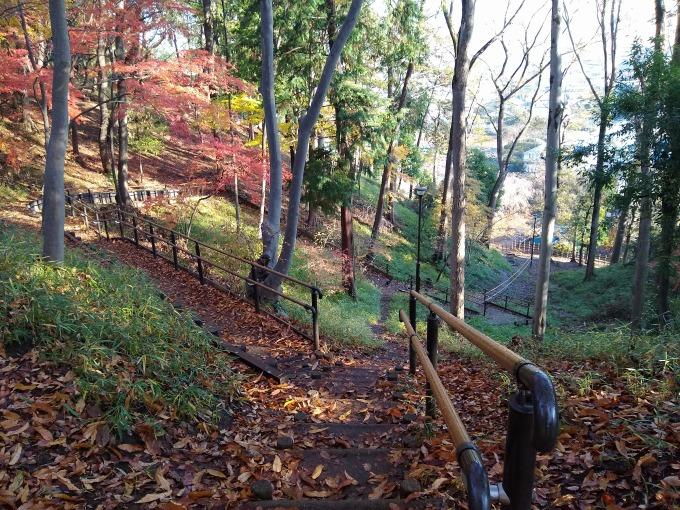 綱島公園の景色