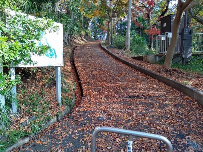 綱島公園東口の坂