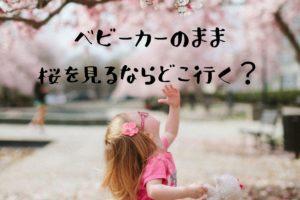 綱島でベビーカーでお花見お散歩するならどこがいい?