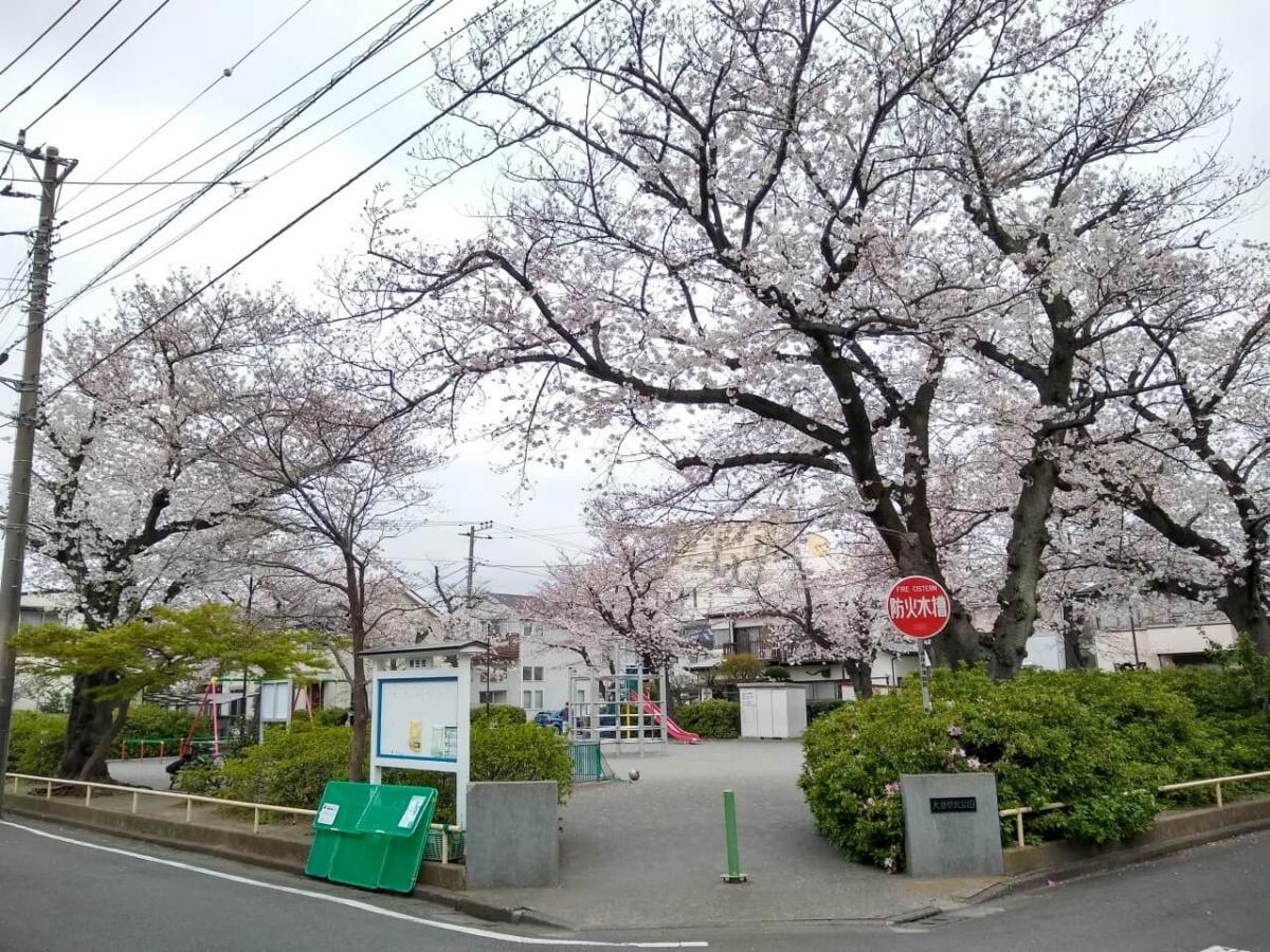 大曽根北公園20200328桜