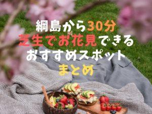 綱島駅から近い芝生お花見スポット