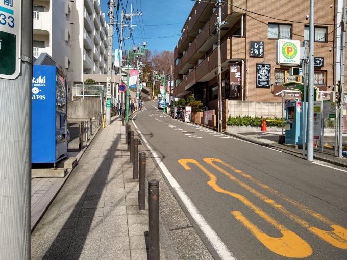 綱島駅からの公園坂