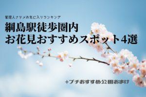 綱島駅周辺 徒歩圏内のお花見スポット4選+α!