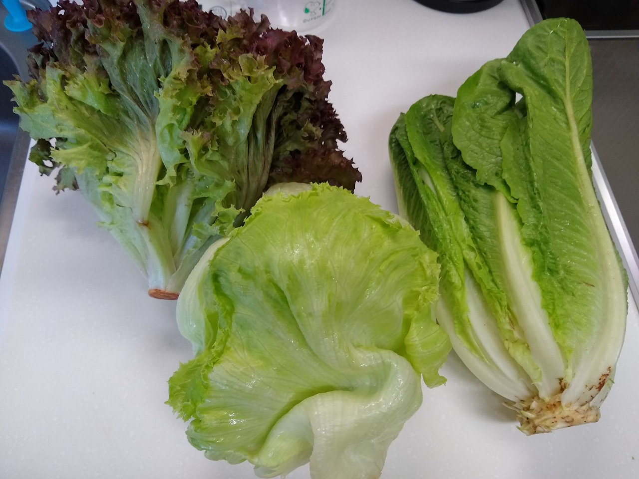 クックパッドマートの野菜セット