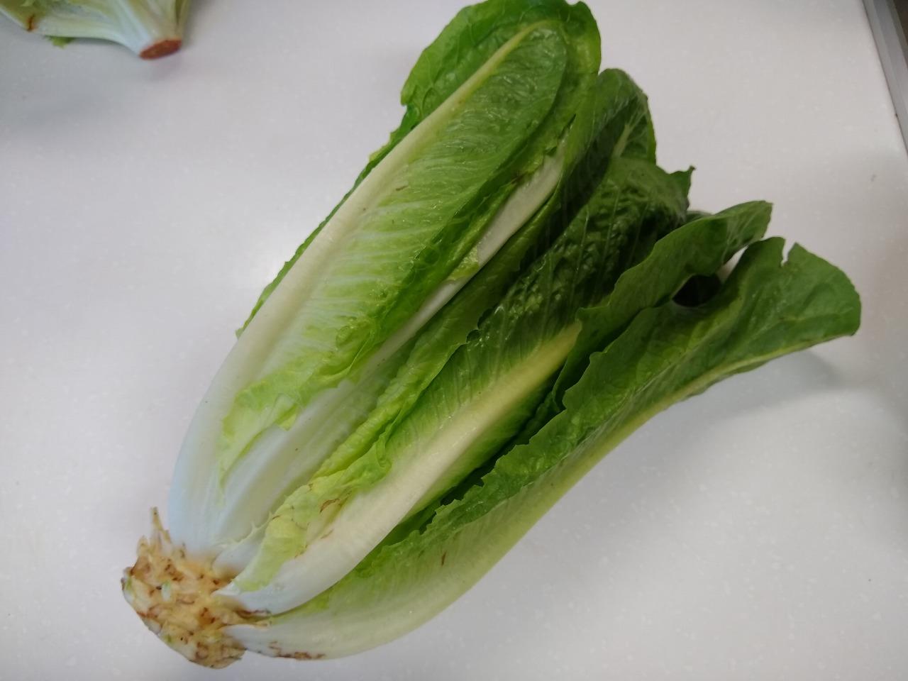 クックパッドマートのサラダセット(ロメインレタス)