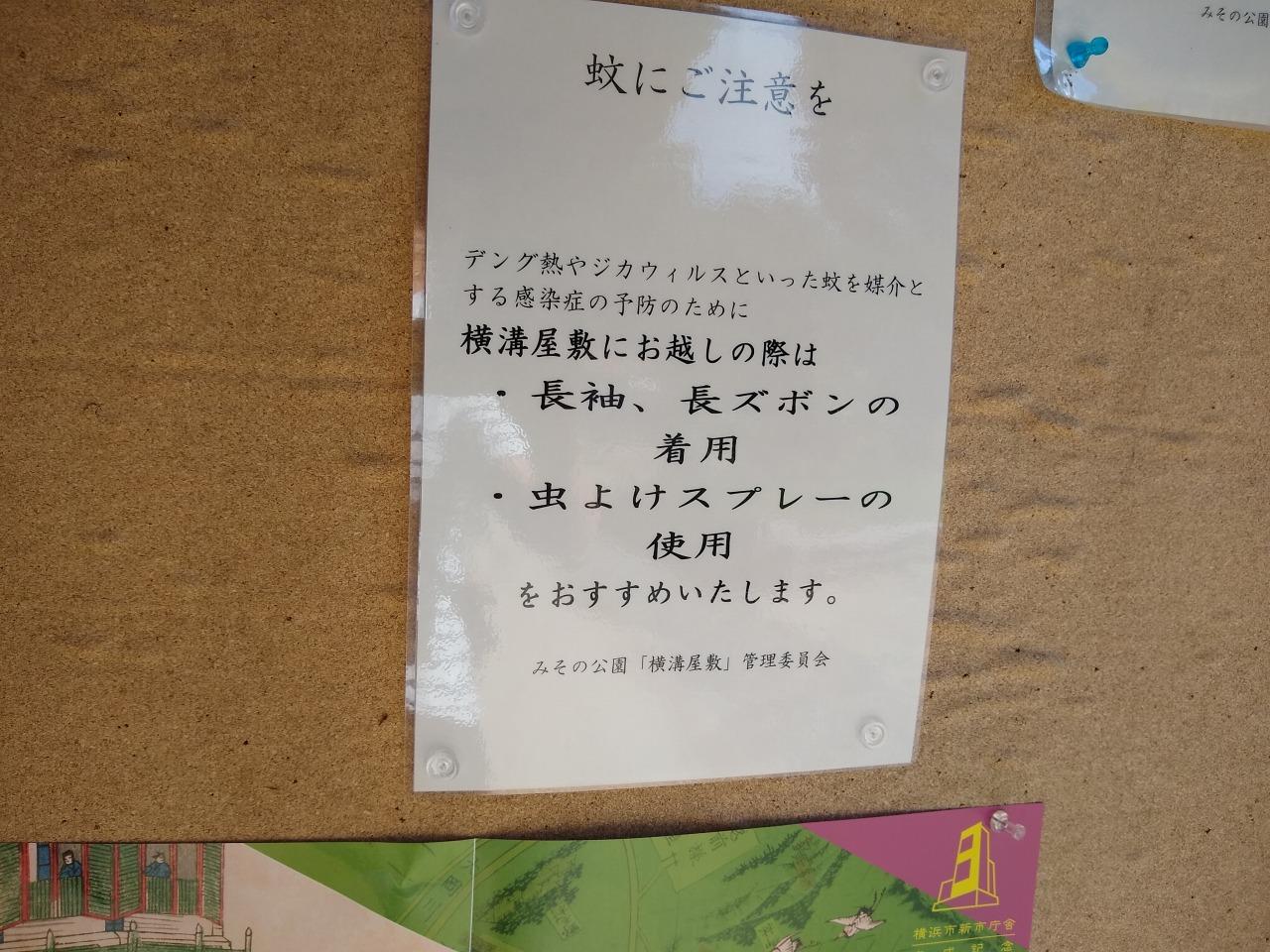 横溝屋敷(蚊に注意)