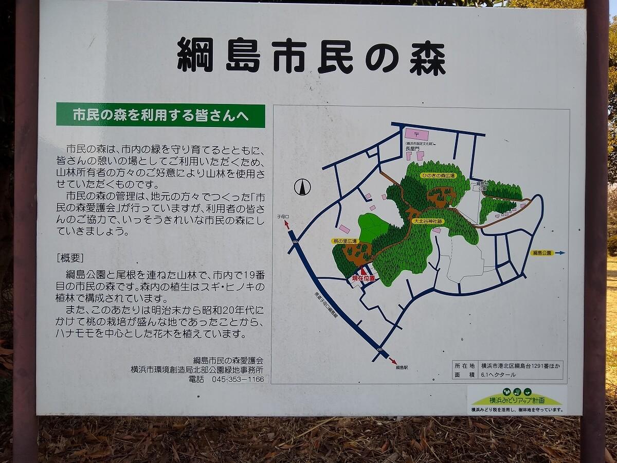 綱島市民の森桃の里広場