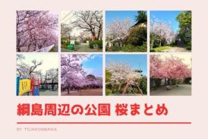 綱島の桜まとめ