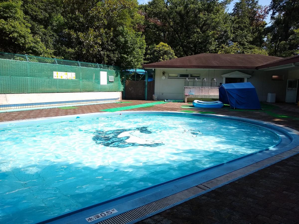 綱島公園プール2021幼児プール